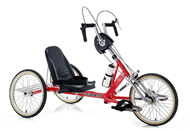 Hand Powered Low Seat Trike WM3002
