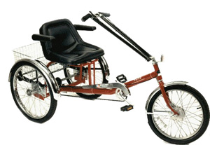Matchless phrase, three wheeled recumbent adult bicycles consider, that
